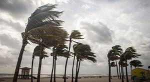 Florida Public Adjuster Hurricane Claims